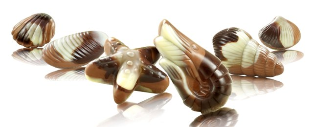Морские ракушки 800г